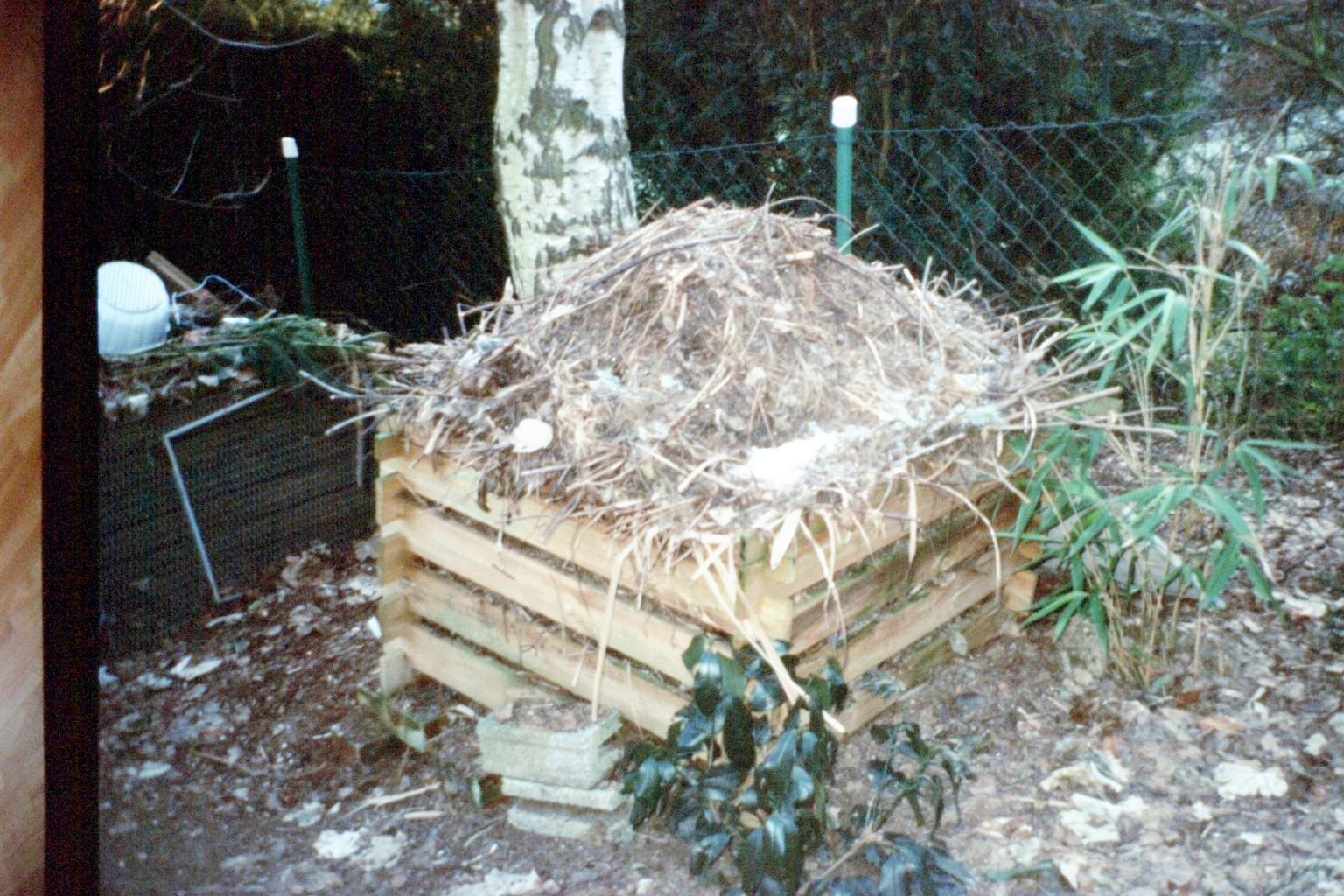 Il compost for Concime per gerani fatto in casa